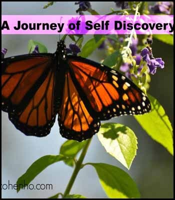 Self discovery Blogger's Pit Stop #240
